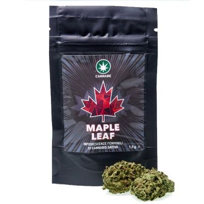 MAPLE LEAF (1,5 / 3 GR)